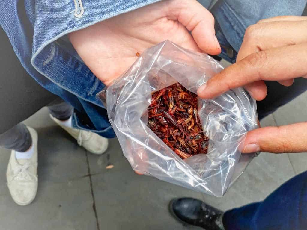 Chapulines Streetfood in Mexiko