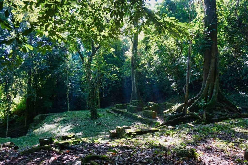 Ein mystischer Einblick im Dschungel von Palenque
