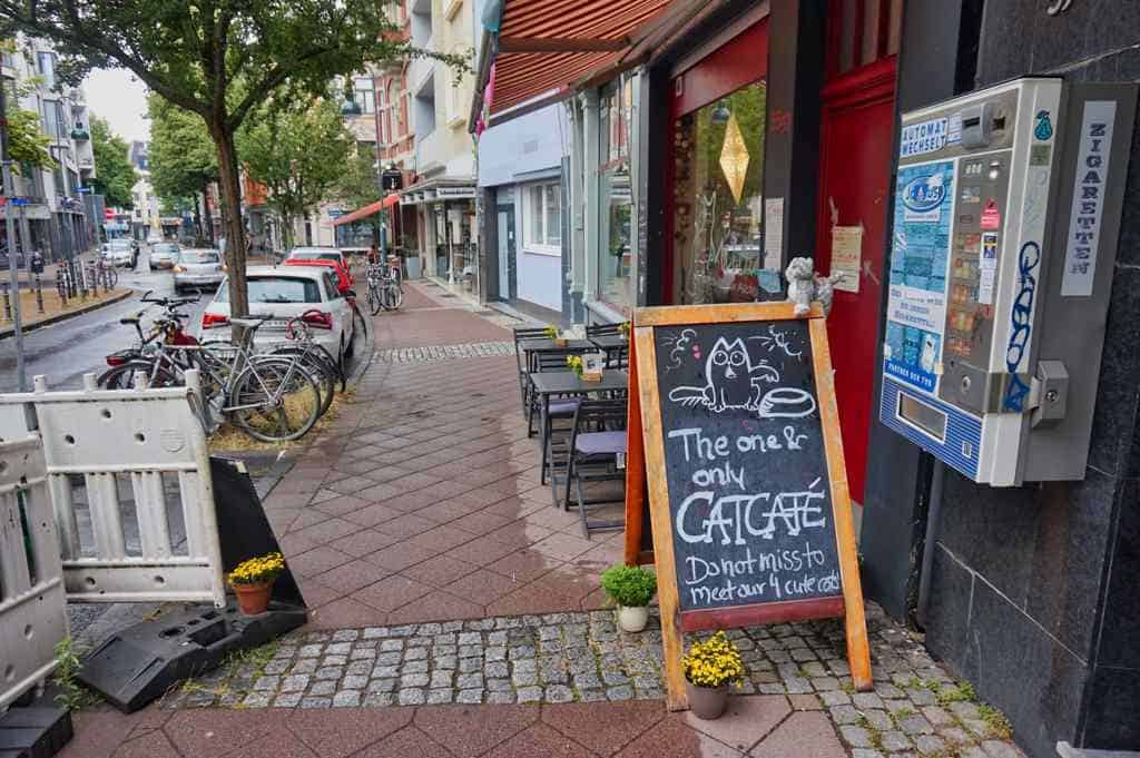 Das Milou Katzencafe in Aachen